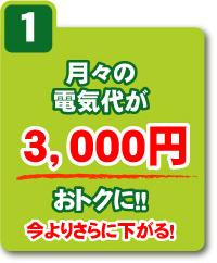 月々の電気代が3,000円おトクに