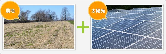 農地に太陽光パネルを設置
